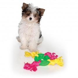Hračka pes Denta Roo Disk se 4 uzly 24cm/8cm