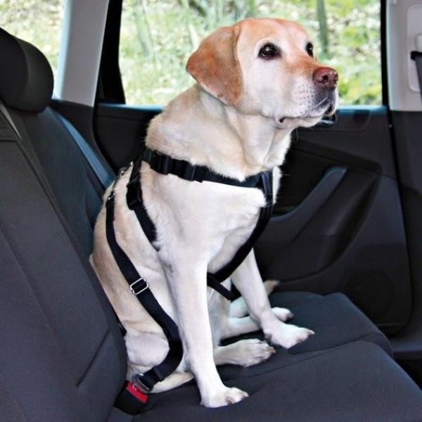 Postroj do auta pro psa L 70-90cm