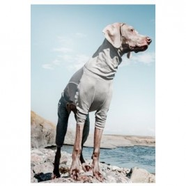 Obleček Hurtta Body Warmer šedý 35S *