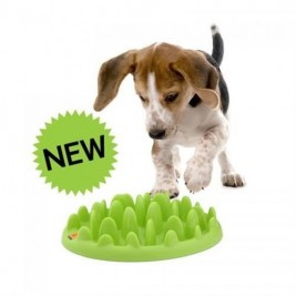 Miska plast interaktivní Green mini The Company 29 x 22,5 x 6,5