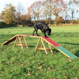 Dog Activity AGILITY nácviková lávka 456x64x30 cm